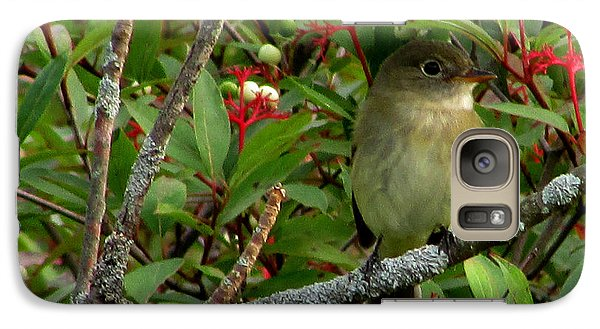 Galaxy Case featuring the photograph Hardly The Least Least Flycatcher by Kimberly Mackowski