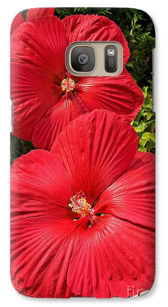Galaxy Case featuring the photograph Hardy Hibiscus by Sue Smith