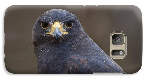 Harris Hawk Galaxy S7 Case