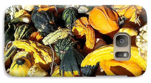 Galaxy Case featuring the photograph Harvest Squash by Caryl J Bohn
