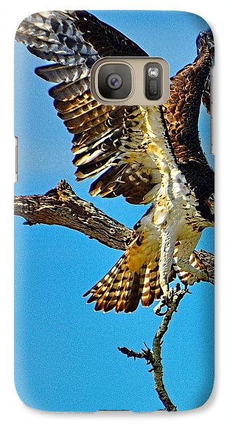 Galaxy Case featuring the photograph Hawk's Heavy Load by Pamela Blizzard