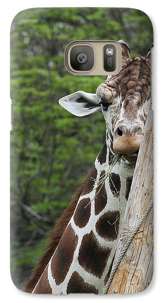 Galaxy Case featuring the photograph Hay Not Just For Horses by Judy Whitton