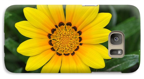 Galaxy Case featuring the photograph He Loves Me  He Loves Me Not by Lew Davis