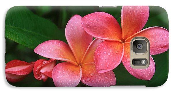 He Pua Laha Ole Hau Oli Hau Oli Oli Pua Melia Hae Maui Hawaii Tropical Plumeria Galaxy S7 Case
