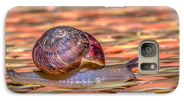 Galaxy Case featuring the photograph Helix Aspersa by Rob Sellers