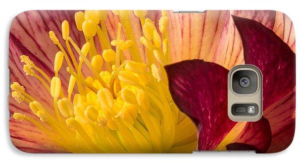 Hellebore Ruby Yellow Glow Galaxy S7 Case