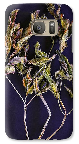 Galaxy Case featuring the photograph Herbarium 1 by Vladimir Kholostykh
