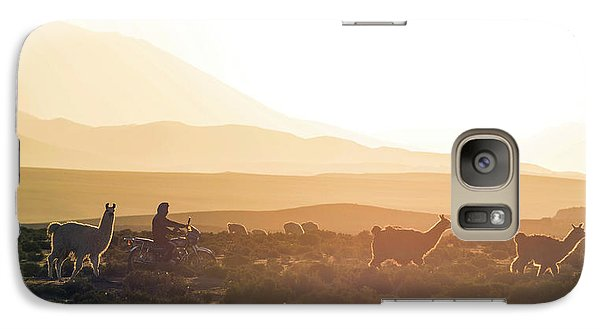 Llama Galaxy S7 Case - Herd Of Llamas Lama Glama In A Desert by Panoramic Images