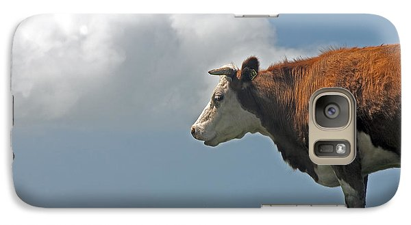 Galaxy Case featuring the photograph Hereford Cow by Dennis Cox WorldViews