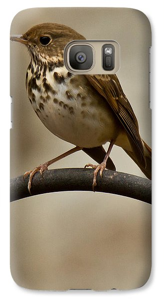 Galaxy Case featuring the photograph Hermit Thrush by Robert L Jackson