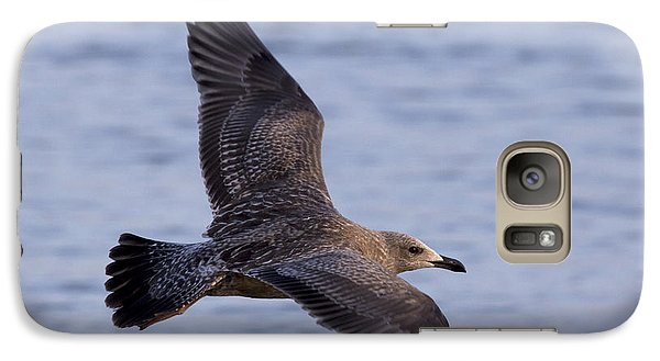 Galaxy Case featuring the photograph Herring Gull In Flight Photo by Meg Rousher
