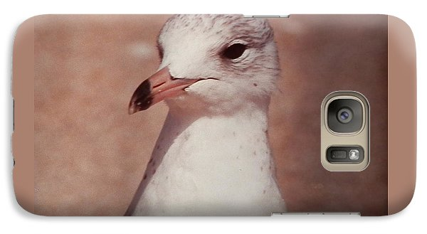 Galaxy Case featuring the photograph Beach Gull On The Hunt by Belinda Lee