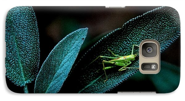 Galaxy Case featuring the photograph Hey  I'm Trying To Hide by Debra Fedchin