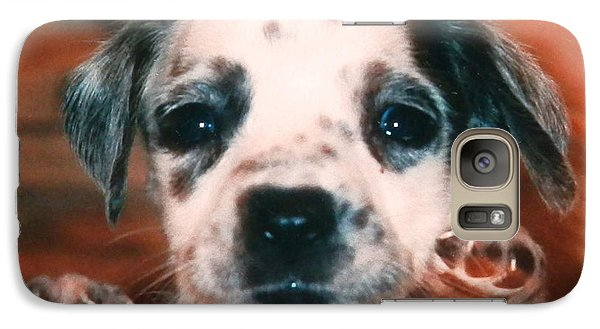 Galaxy Case featuring the photograph Dalmatian Sweetpuppy by Belinda Lee