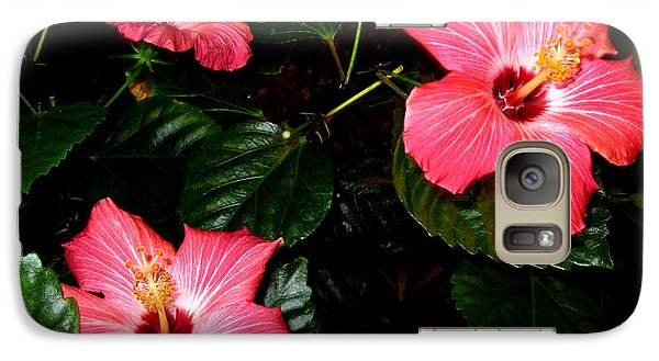 Galaxy Case featuring the photograph Hibiscus Flowers by Oksana Semenchenko