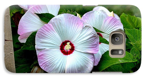 Galaxy Case featuring the photograph Hibiscus Giants by Kathleen Stephens