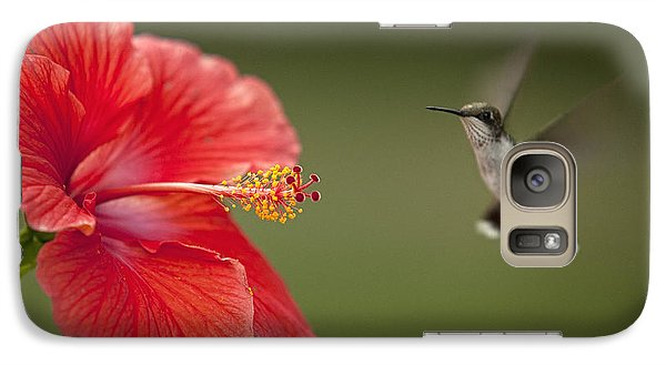 Galaxy Case featuring the photograph Hibiscus Hummingbird by John Crothers