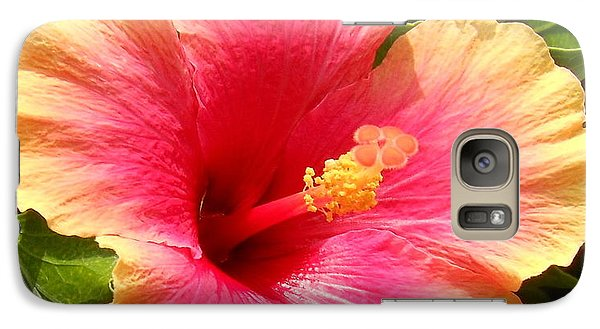 Galaxy Case featuring the photograph Hibiscus by Kay Gilley