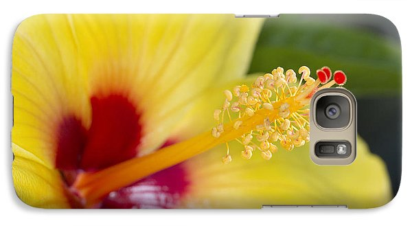 Galaxy Case featuring the photograph Hibiscus Macro by Robert Camp