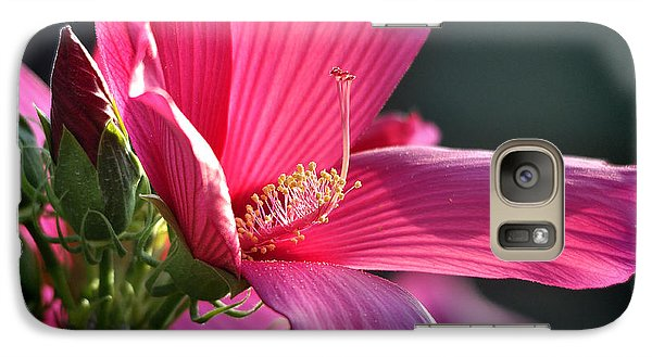 Galaxy Case featuring the photograph Hibiscus Morning Bright by Nava Thompson