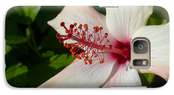 Galaxy Case featuring the photograph Hibiscus by Richard Stephen