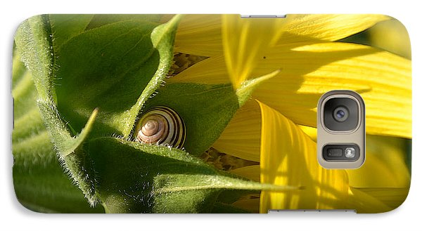 Galaxy Case featuring the photograph Hiding Snail Wc  by Lyle Crump