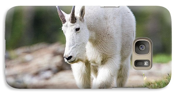 Galaxy Case featuring the photograph High Country Mountain Goat by Jack Bell