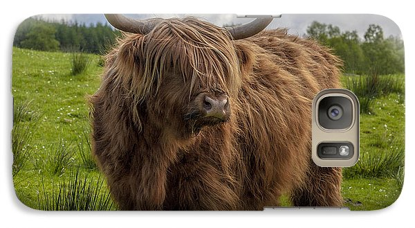 Galaxy Case featuring the photograph High Know Brown Cow by Terry Cosgrave