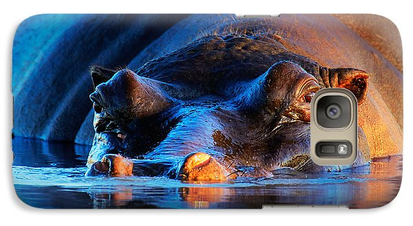 Hippopotamus  At Sunset Galaxy Case by Johan Swanepoel