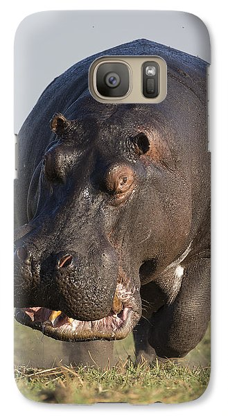 Hippopotamus Bull Charging Botswana Galaxy Case by Vincent Grafhorst