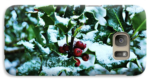 Galaxy Case featuring the photograph Holly And New Snow by Mindy Bench
