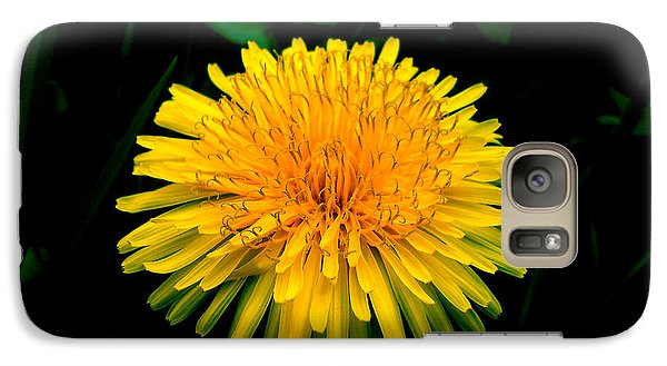 Galaxy Case featuring the photograph Honesty by Lucy D