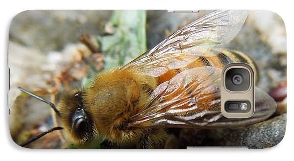 Galaxy Case featuring the photograph Honey Bee by Pete Trenholm