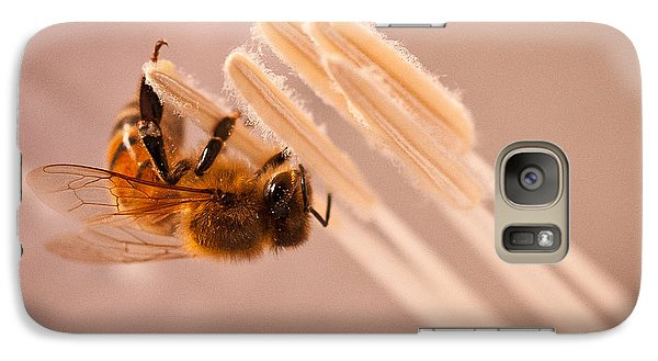 Galaxy Case featuring the photograph Honeybee On Jimson by Janis Knight