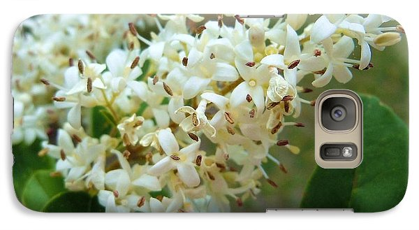 Galaxy Case featuring the photograph Honeysuckle #1 by Robert ONeil