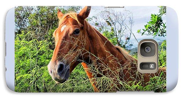 Galaxy Case featuring the photograph Horse 1 by Dawn Eshelman