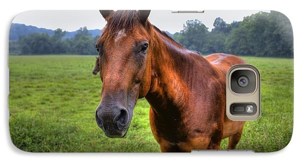 Galaxy S7 Case featuring the photograph Horse In A Field by Jonny D