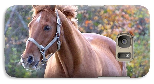 Galaxy Case featuring the photograph Horse Muscle by Glenn Gordon