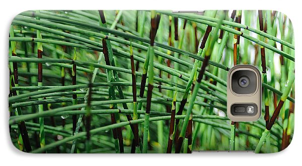 Galaxy Case featuring the photograph Horse Tail Zen Garden by Haleh Mahbod