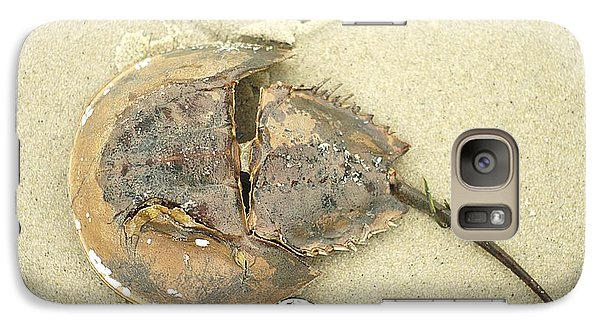 Galaxy Case featuring the photograph Horseshoe Crab On The Beach by Suzanne Powers
