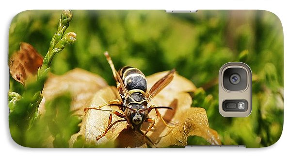 Galaxy Case featuring the photograph Hot Wasp... by Al Fritz