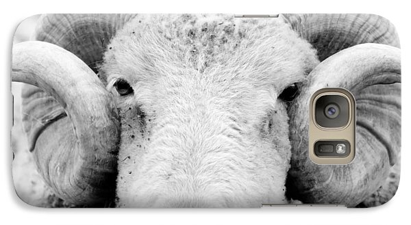 Galaxy Case featuring the photograph How Ewe Doin by Courtney Webster