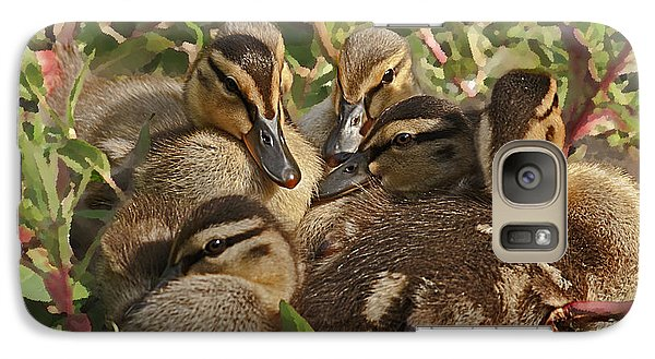 Galaxy Case featuring the photograph Huddled Ducklings by Kate Brown