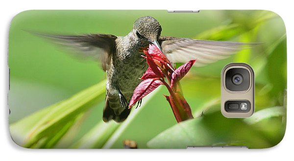 Galaxy Case featuring the photograph Hummer At The Rose by Debby Pueschel
