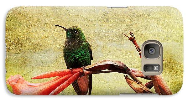 Galaxy Case featuring the photograph Hummingbird 1 by Teresa Zieba