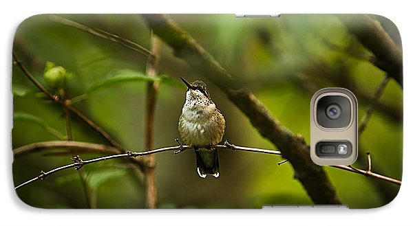 Galaxy Case featuring the photograph Hummingbird 3 by Tammy Schneider