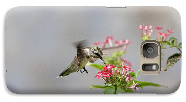 Galaxy Case featuring the photograph Hummingbird And Penta by Robert Camp