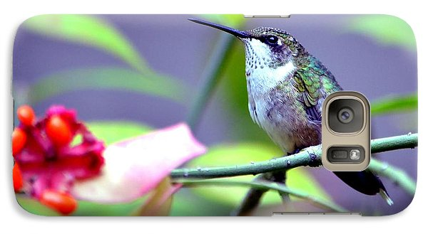 Galaxy Case featuring the photograph Hummingbird by Deena Stoddard