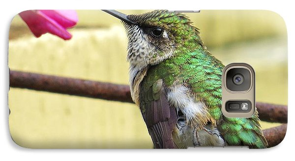 Galaxy Case featuring the photograph Hummingbird Details 4 by Judy Via-Wolff