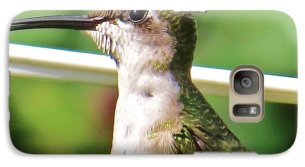 Galaxy Case featuring the photograph Hummingbird Details 5 by Judy Via-Wolff
